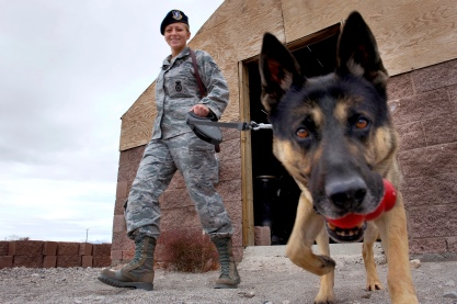 101216-F-5985C-145        U.S. Air Force Staff Sgt. Bobbie Ohm walks with Nero, a working military dog, to search for explosives during a joint explosive detection training exercise at Nellis Air Force Base, Nev., on Dec. 16, 2010.  Ohm, a military working dog handler, is assigned to the 99th Security Forces Squadron.  DoD photo by Senior Airman Brett Clashman, U.S. Air Force.  (Released)